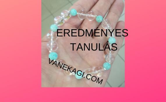 eredmenyes-vanekagi.com