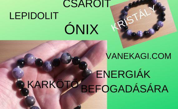 csaroit-vanekagi.com(1)