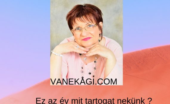 ezazev-vanekagi.com