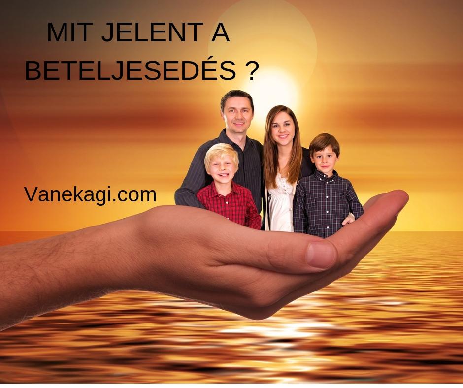 mitjelent-vanekagi.com