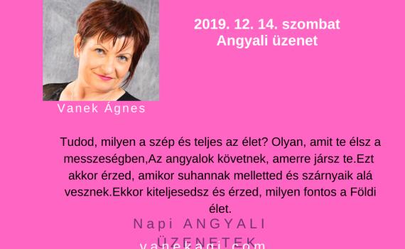 http://vanekagi.com/wp-content/uploads/2019/11/12.14.png