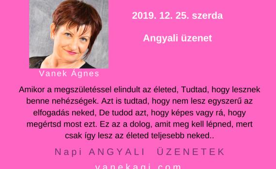 http://vanekagi.com/wp-content/uploads/2019/12/12.25.png
