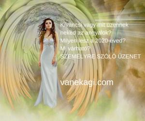 http://vanekagi.com/wp-content/uploads/2019/12/angyalireklám4.png