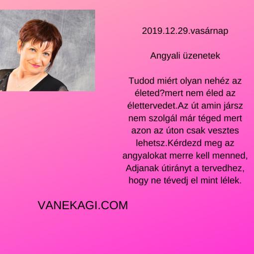 http://vanekagi.com/wp-content/uploads/2019/12/vasar.png