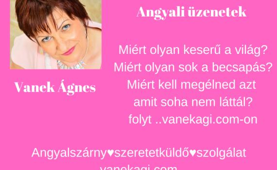 http://vanekagi.com/wp-content/uploads/2020/01/csere.png