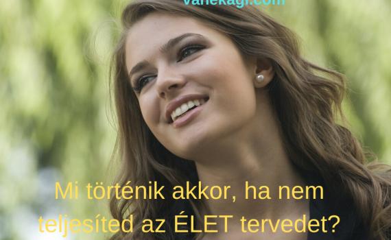 http://vanekagi.com/wp-content/uploads/2020/01/eletterv.png