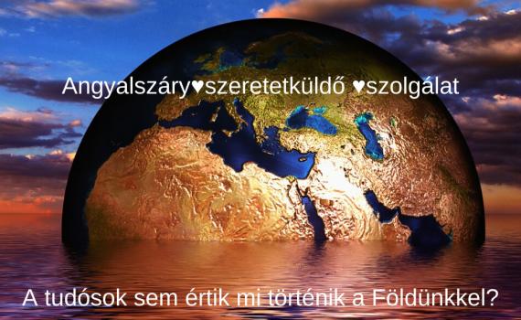 http://vanekagi.com/wp-content/uploads/2020/01/fold.png